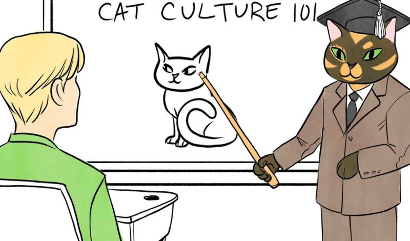 How to Understand Your Cats: 101 Cat's Language